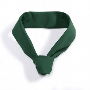 GREEN NECK TIE BP 110122