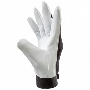 GLOVES W+R LEPUS 125019