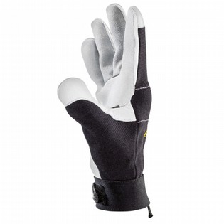 GLOVES W+R CORIUM I 125021